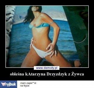 imagehost11.jpg